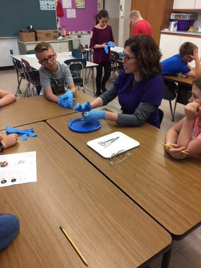 Nurse Macie demonstrates cow eye dissection
